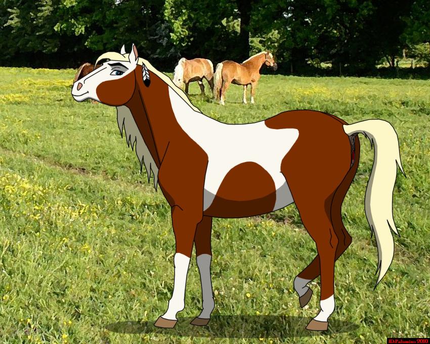 of stallion the cimarron rain Fairy tail natsu x juvia
